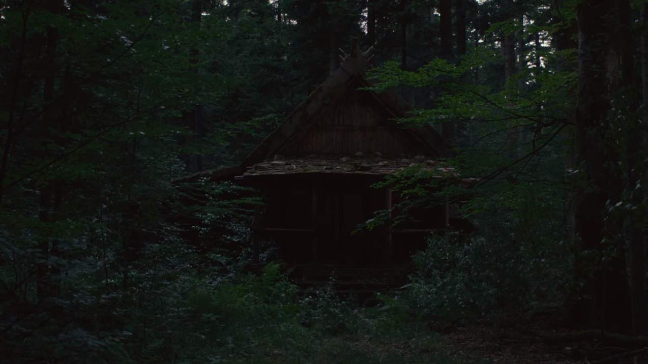 The Forest (2016) screenshot