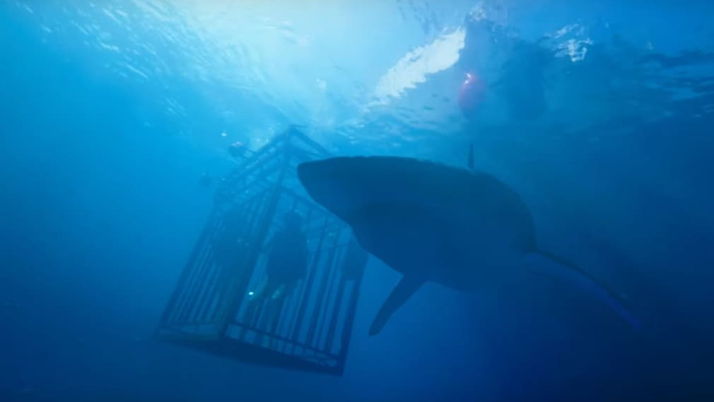 47 Meters Down (2017) screenshot