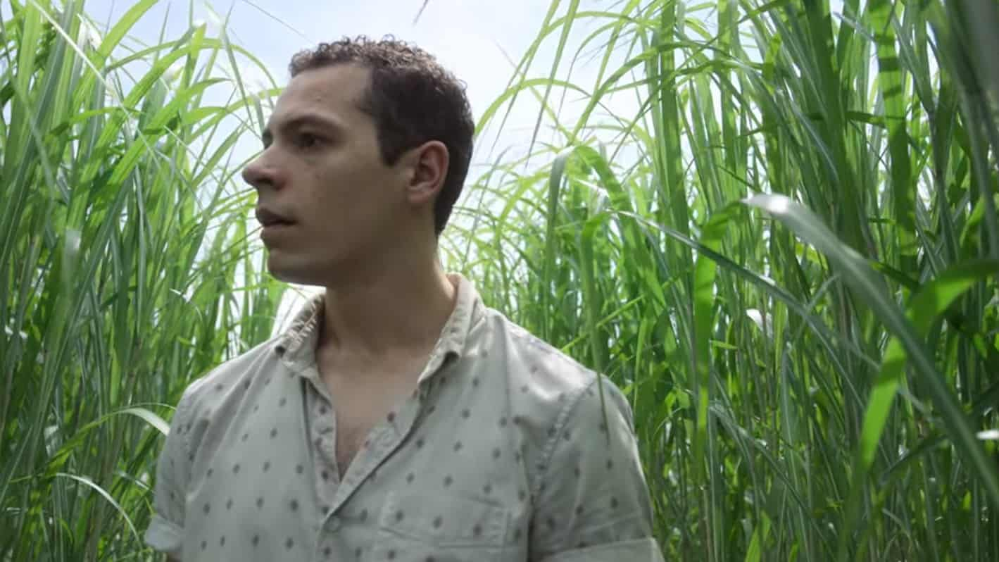 In the Tall Grass (2019) screenshot